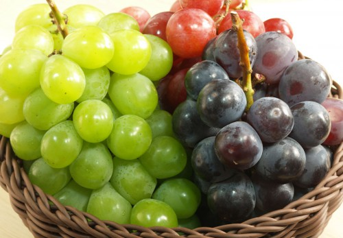 20120917_grape_3090_w800