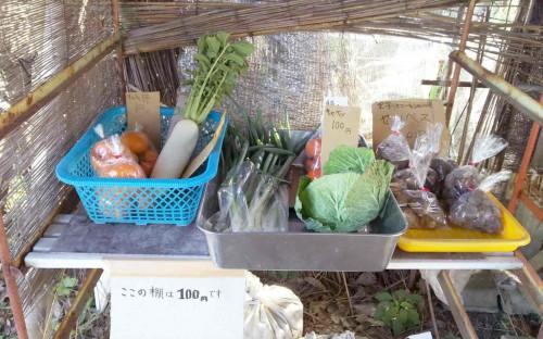 野菜たち777