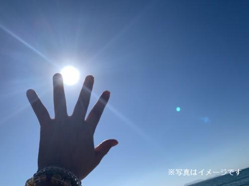 島菊花堂イメージ画像