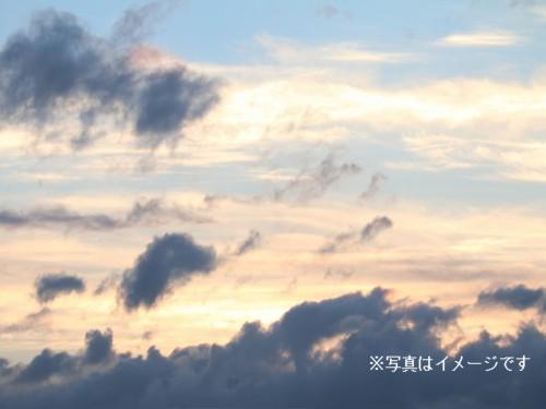 島菊花堂イメージ画像2