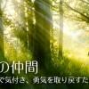 光の世界への案内所。森の中のような癒しの空間で本来の自分を取り戻し、あなたらしい生活を送ってみませんか?